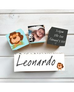 Personalised with Your Picture Lion Birth Block Set