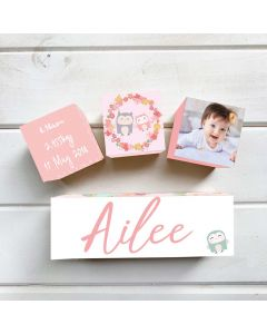 Personalised with Your Picture Owl Birth Block Set
