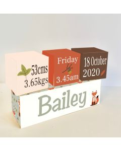 Woodland Brown Wooden Birth Block Set
