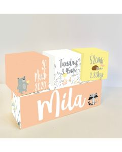 Woodland and Pastel Wooden Birth Block Set